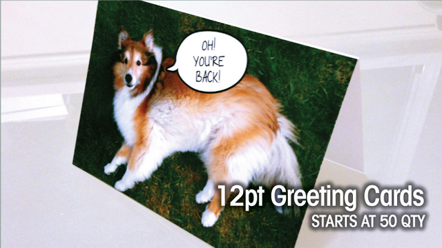 12pt Greeting Cards